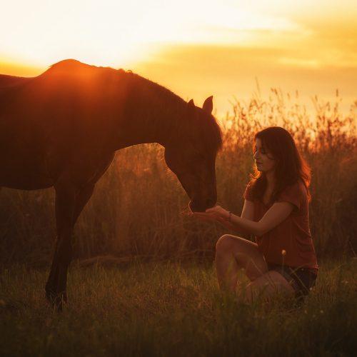 Mein Welsh Pony Golda & ich